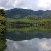 9211_thailand_phattalung_sal_forest_reservoir_6259
