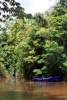 9211_thailand_phattalung_sal_forest_reservoir_6264