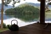 9211_thailand_phattalung_sal_forest_reservoir_6276