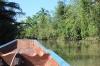 Thailand Surat Thani Tapi River Tour