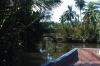 thailand_tapi_river_surat_thani_11
