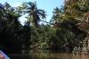 thailand_tapi_river_surat_thani_16