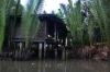 thailand_tapi_river_surat_thani_20