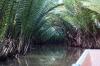 thailand_tapi_river_surat_thani_26
