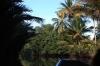 thailand_tapi_river_surat_thani_37