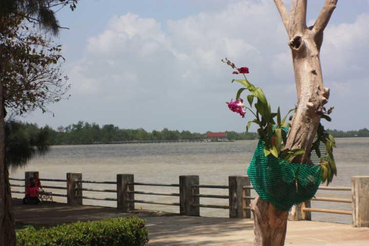 Songkhla Lake, Thailand