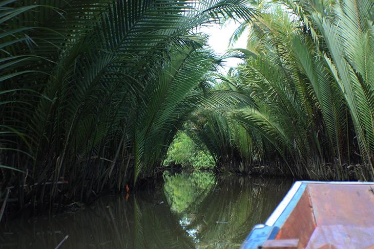 thailand_tapi_river_surat_thani