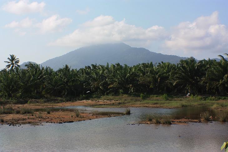 Thailand Sichon
