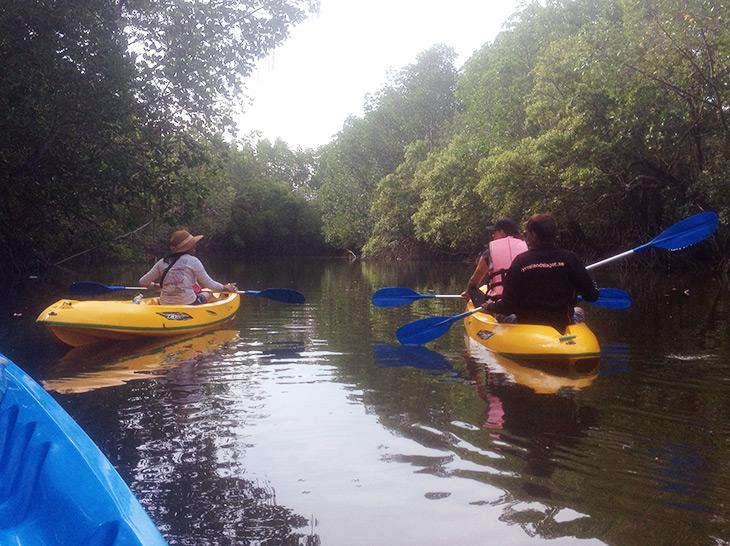 Thailand Mangrove Kayaking Khanom