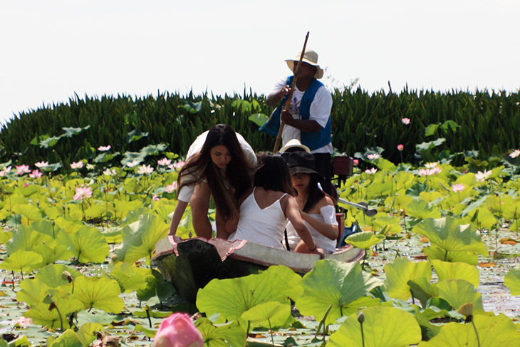Thailand Thale Noi Waterfowl Waterlilies