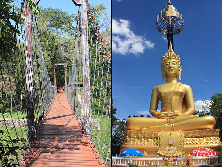 thailand khao kradong forest park 2955