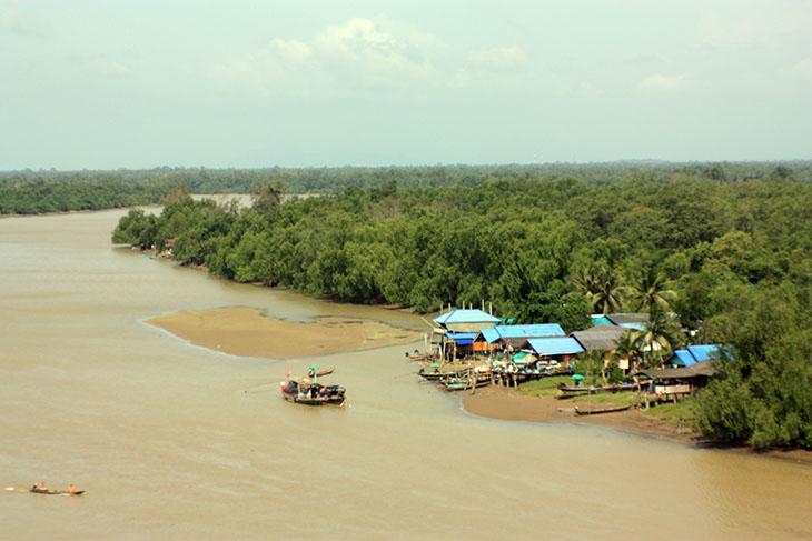 Thailand Surat Thani Rivers