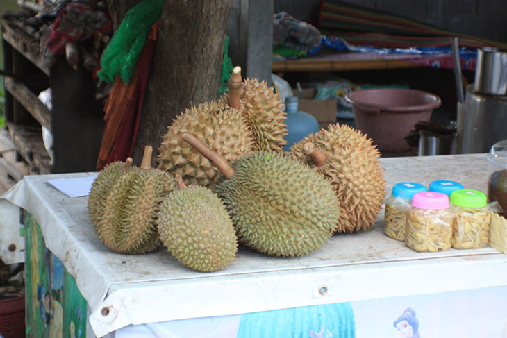 thailand, ban khiri wong, nakhon si thammarat