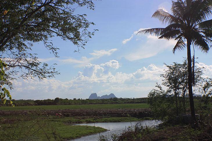 Thailand, Surat Thani Province, Ban Chonkhram