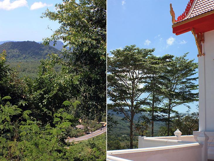 Wat Chan Thattharam, Tong Nian