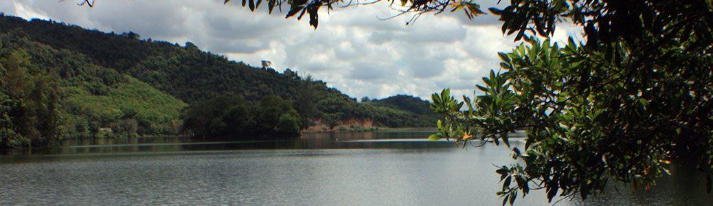 Thailand, Phattalung, Sal Forest Reservoir