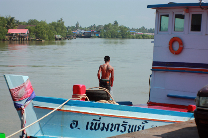 travel, thailand, surat thani, tapi riverside