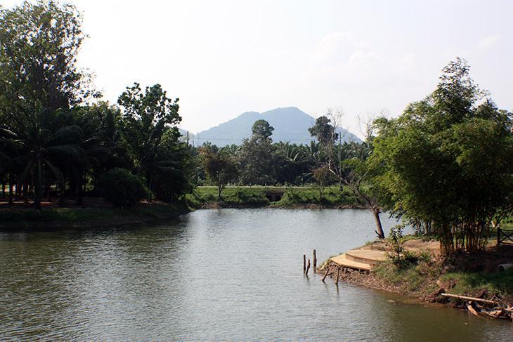 pak phraek park, surat thani, thailand