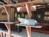 thailand_beach_museum_hat_sai_kaew_2308