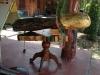 thailand_beach_museum_hat_sai_kaew_2331