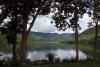 9211_thailand_phattalung_sal_forest_reservoir_6271