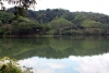 9211_thailand_phattalung_sal_forest_reservoir_6283