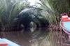 thailand_tapi_river_surat_thani_18