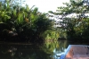 thailand_tapi_river_surat_thani_33