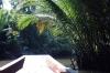 thailand_tapi_river_surat_thani_5