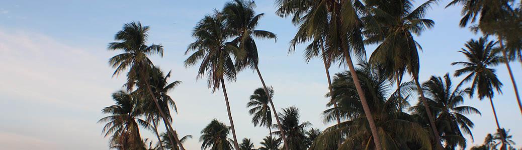 Thailand, Khanom, Beach, Sunrise